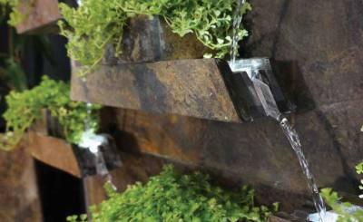 Fontaine cactose