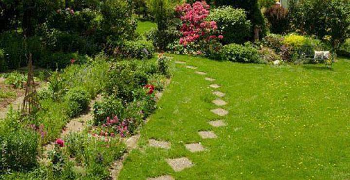 Asap paysage availles en chatellerault vienne 86 for Entretien jardin 86